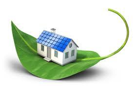 house on leaf
